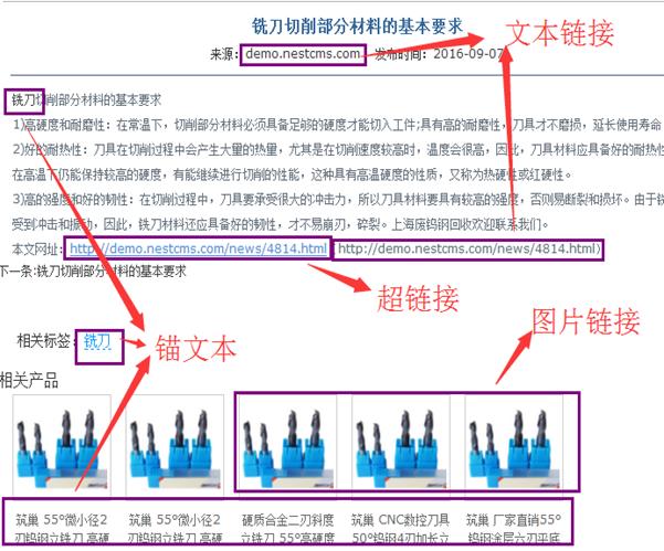 常见seo名词解释一(网站SEO常见术语说明)-从SEO到优化实战大师